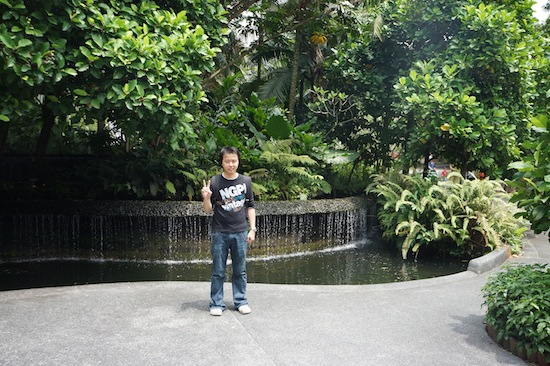 Singapore Botanic Garden Photos