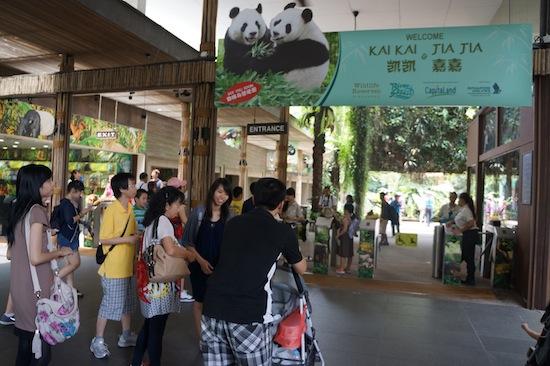 marketing mix singapore zoo