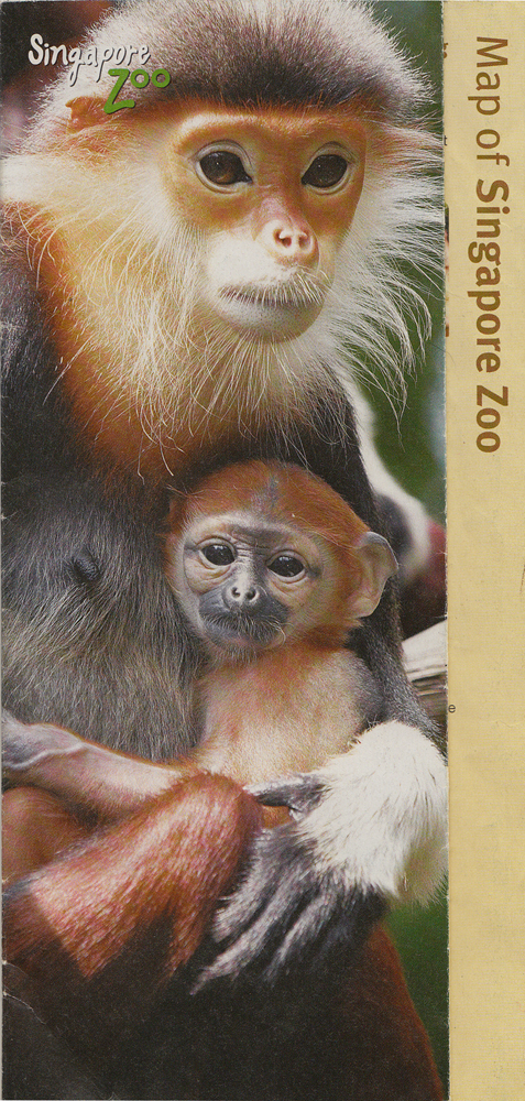 Singapore Zoo Guide Map