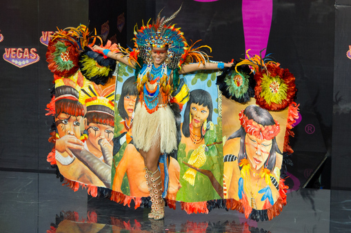National Costume miss brazil 2013
